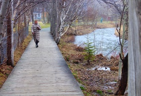 A pedestrian on Rennies Mill Trail in St. John's listens to their phone. This summer, a project of Music NL and the City of St. John's will allow hikers and walkers to download a playlist of local music. — Andrew Waterman/The Telegram