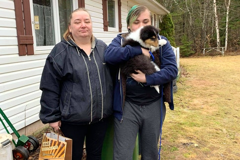 After their old dog died a few years ago, Marie LaPointe promised her son she'd find him a new dog. When she saw Brandi and James Biggar of West Devon had a litter, she reached out, hoping they would be able to donate one. To her surprise, the Biggars agreed, and had a puppy dropped off over the Easter weekend.