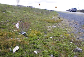 Garbage strewn beside a Nova Scotia highway. - File photo