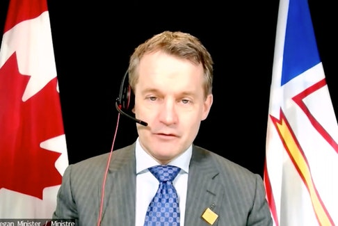 Natural Resources Minister Seamus O'Regan appeared at the webcast House of Commons Standing Committee on Natural Resources Monday.