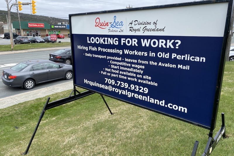 A billboard at the corner of Freshwater Road and Crosbie Road in St. John's advertizes jobs available at the QuinSea fish plant in Old Perlican.  - Keith Gosse