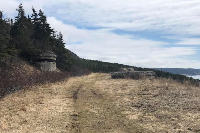 Placentia-area group hopes to breathe new life into local T'railway system