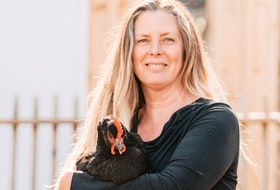 Erin Patterson of Glenmont, with one of her chickens, has been acclaimed as the NDP candidate for Kings North for the upcoming provincial election. SAMSON PHOTOGRAPHY - CONTRIBUTED
