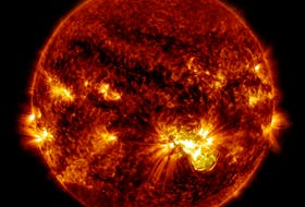 A giant sunspot erupted on Oct. 24, 2014, and was captured by NASA's Solar Dynamics Observatory, which watches the sun constantly. This image shows extreme ultraviolet light that highlights the hot solar material in the sun's atmosphere. The flare erupted from a particularly large active region, labelled AR 12192, that was the largest in 24 years. - NASA/GSFC/SDO