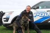 MoJo is the newest member of the Truro Police Service. The dog, who recently arrived from Germany, will become Cst Scott Milbury's partner when PSD Onyx retires later this year.  Lynn Curon photo