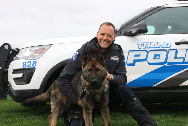 MoJo is the newest member of the Truro Police Service. The dog, who recently arrived from Germany, will become Cst Scott Milbury's partner when PSD Onyx retires later this year.  Lynn Curon photo - Lynn Curwin