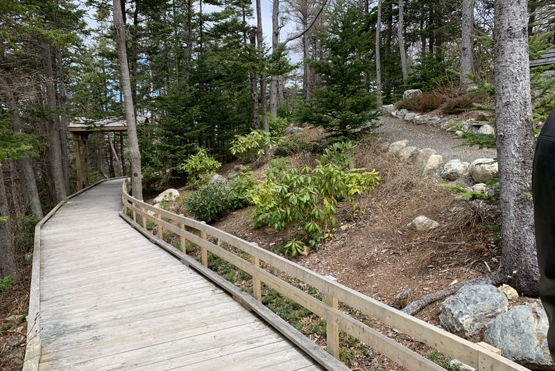 The Friendship Garden is one of the many scenic areas to enjoy while walking the trail in Chamberlains Park in Conception Bay South. The park was created by a committee and other volunteers. — Rosie Mullaley