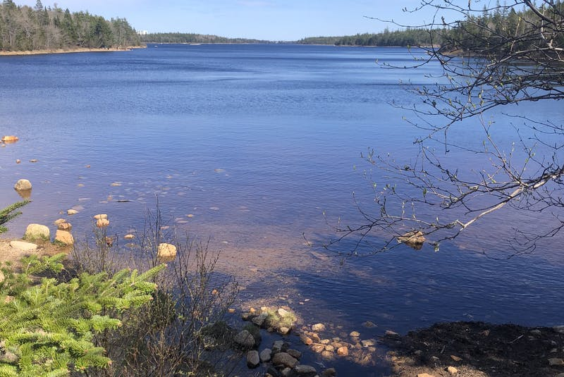 During the hike, there will be plenty of opportunities to enjoy the site of Long Lake.  - Heather Fegan