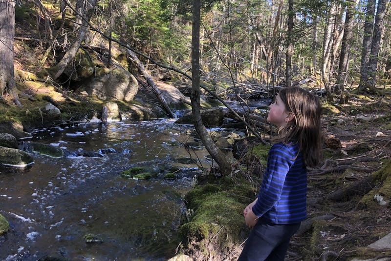 Heather Fegan's daughter takes a closer look at the waterfall.  - Heather Fegan