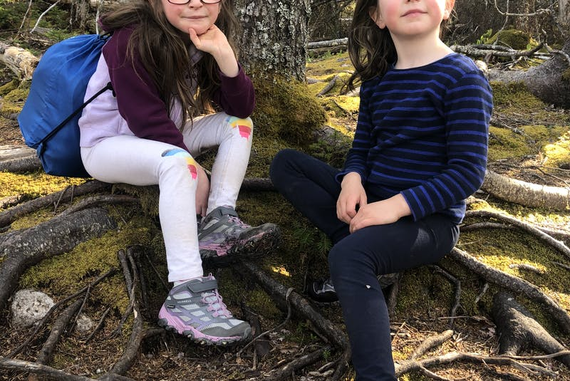 The terrain is varied. At times it feels like you're not on any trail at all, navigating roots, rocks, and big puddles, then suddenly you find yourself on an obvious dirt path, says Heather Fegan. Her daughters enjoyed a rest on some roots of the large trees along the trail. - Heather Fegan