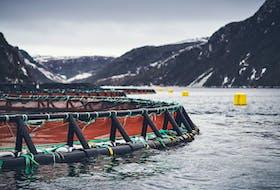 A salmon farm site on the Connaigre Peninsula on Newfoundland's south coast.