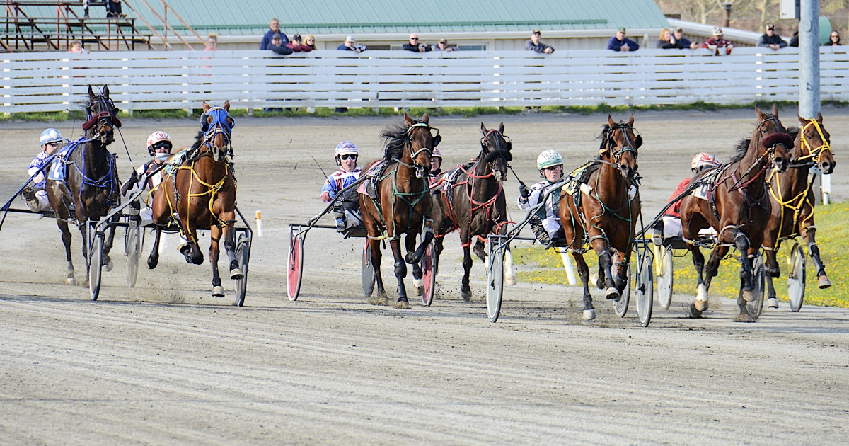 Bugsy Maguire and Austin Sorrie repeat Saturday at Charlottetown Driving Park | Saltwire