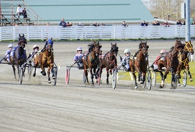 The horses come up the home stretch during the first race of the night Saturday at Red Shores at the Charlottetown Driving Park.