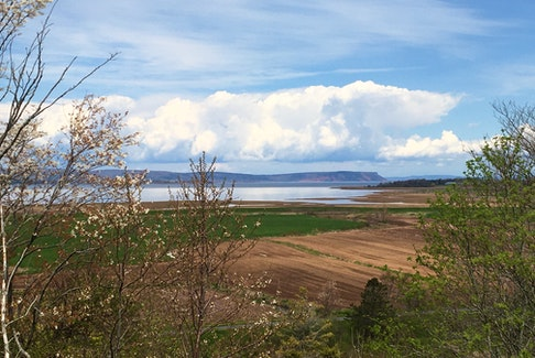 Pauline Murray sent this lovely springtime view overlooking Cape Blomidon and the Bay of Fundy. Parrsboro, across the bay in Cumberland County, is in the far distance along with the Harvest Trail, the dikes and the farmers' fields. It doesn't get any better. French explorer Samuel de Champlain called the cape Cap Poutrincourt and local Acadian settlers called it Cap Baptiste. English settlers later called it Cape Porcupine, but the common term was Cape Blowmedown, from which Blomidon is derived. Did you know the Battle of Blomidon happened there during the America Revolution?