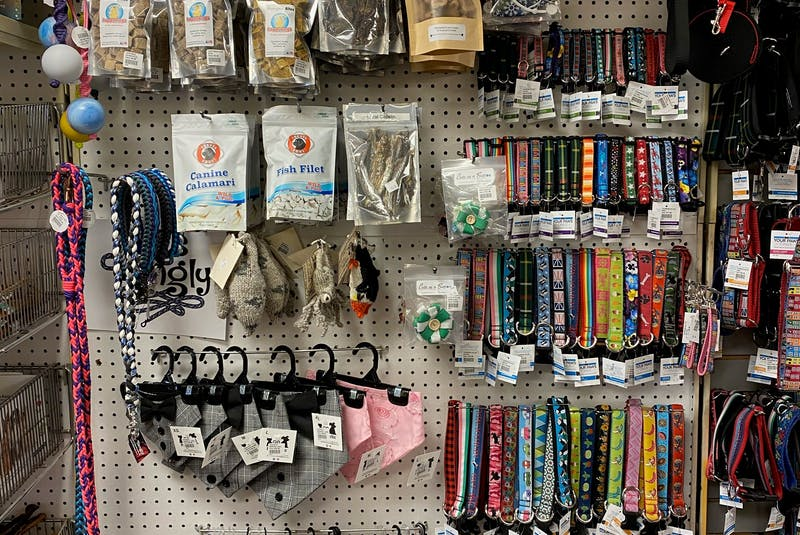 With the loss of tourists last year, The Doghouse - a small local retailer located in St. John's, NL - appreciates the support of loyal customers and staycationers. The business stocks a lot of locally-made items for pets to wear, including collars and bandanas. Many customers are also shopping for activewear items for their dogs, says Rachel Howells. - Contributed