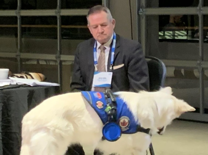 Jerry Gillis, shown with his Swiss shepherd service dog, Rolex, had served as the most recent Port of Sydney board chair up until March. IAN NATHANSON/CAPE BRETON POST