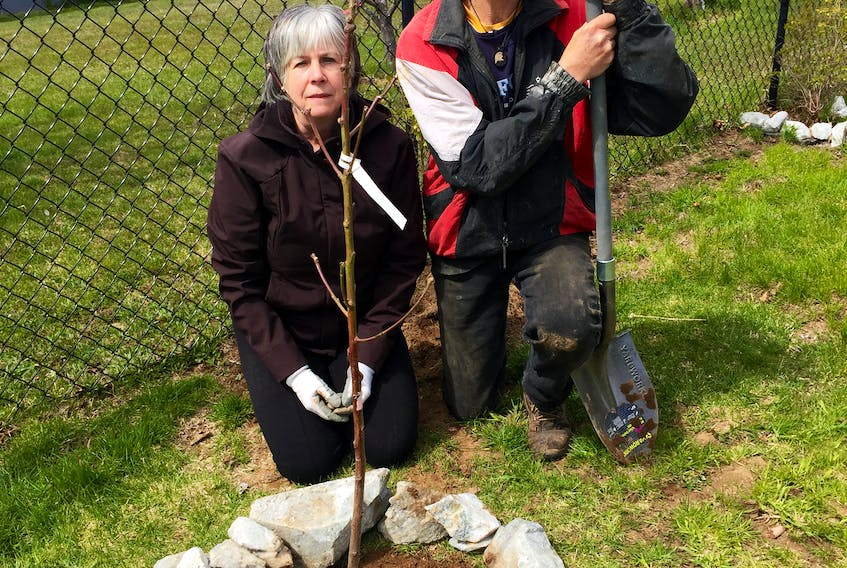 Lovey Walker and Brent Welch love to garden. Just recently they spent the afternoon planting a peach tree in the backyard of their home in Georges River. CONTRIBUTED
