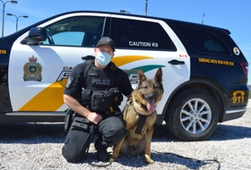 Const. Troy Wadden of the Cape Breton Regional Police Service says his partner Chase is an invaluable tool when it comes to tracking down criminals, evidence and missing people. Chris Connors/Cape Breton Post