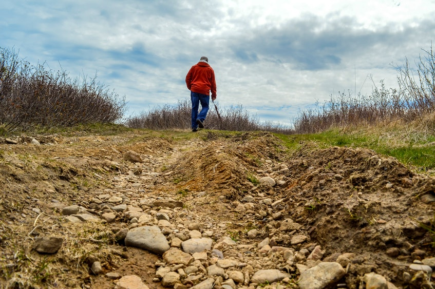 Ron Mazzocca walks near rutting in an area leading off the Coal Town Trail. He's concerned that the off-road culture of the town is harming the local environment. JESSICA SMITH • CAPE BRETON POST