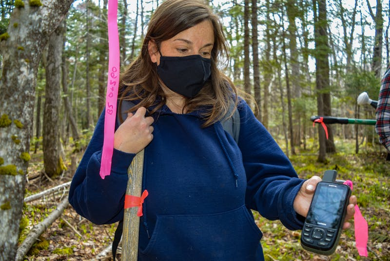 Jen Cooper, ACAP Cape Breton project manager and associate executive, shows the GPS she uses to check is a sapling is in the path of a future berm. JESSICA SMITH/CAPE BRETON POST