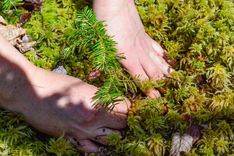 Jen Cooper pats down the earth around a replanted balsam fir. JESSICA SMITH/CAPE BRETON POST