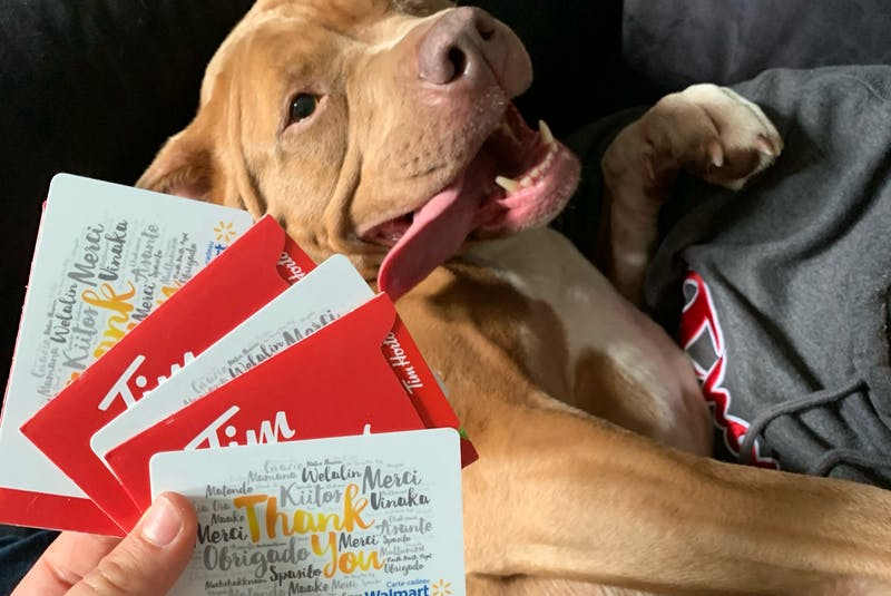 Tori Mitchell and Keegan Richardson split on the gift cards from Tim Hortons and Walmart out of their own pockets - dog not included.  - Contributed