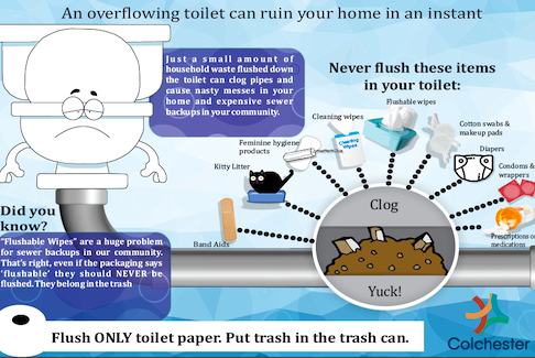 The Municipality of Colchester has produced information on what NOT to flush down a toilet.