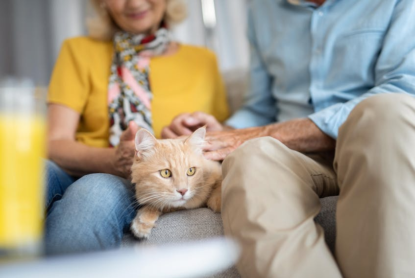 At Parkland Truro, pets are part of the family. - iStock Photo.