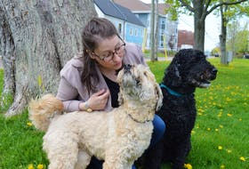 Dr. Zoe Rutledge, who recently graduated from the Atlantic Veterinary College in Charlottetown, loves spending time with her two dogs, Abby, left, an eight-year-old wheaten, and Clarke, a 10-year-old barbet.