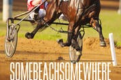 Somebeachsomewhere: The Harness Racing Legend from a One-Horse Stable
