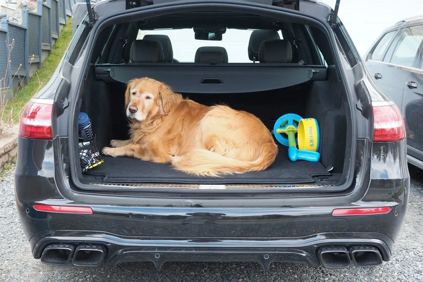 The Mercedes-Benz E63 AMG Wagon is a rolling showcase of the latest AMG tech, deployed in a package that's happy to comfortably haul people, cargo, and a whole lot of something else. Justin Pritchard/Postmedia News - POSTMEDIA