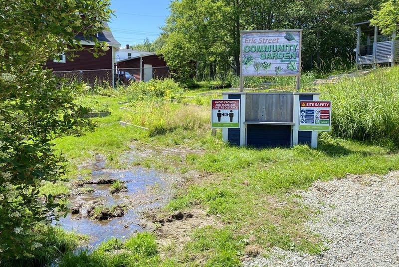 This green space at 28 Eric St. will be the site of three townhouses, a project by Habitat for Humanity, which was given the green light Monday when St. John's city council approved it to be rezoned. Telegram file photo - Saltwire Network