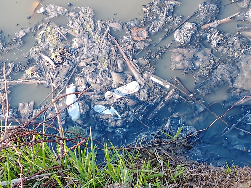 Trash that should never be flushed down a toilet isn't easily digested by the bacteria present in the sewage lagoons. As such, it accumulates and as it slowly rots, it produces a rancid odour. - Contributed