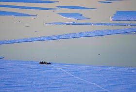 Gary Andersen, Out to the Ice Edge, will be featured in a large-scale photography exhibit on the Bonavista Peninsula late this summer. – Photo by Gary Andersen