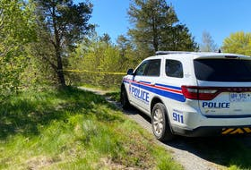Human remains were reportedly found in the woods near Waterford Valley High in St. John's overnight.