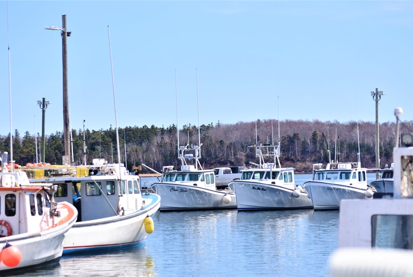 Boats at the Caribou Wharf a day before setting day, which was scheduled for April 30 but pushed to Tuesday due to rain and wind.