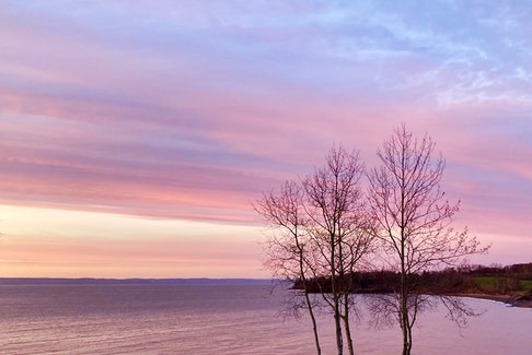 Darlene Ashley sent in this photo of an enchanting sunset over the water in Tennecape, N.S. I love the array of colours such as pink, blue and purple expressed in the sky and reflected on the water. A sunset is truly a natural piece of artwork right above our eyes, on display every evening.  