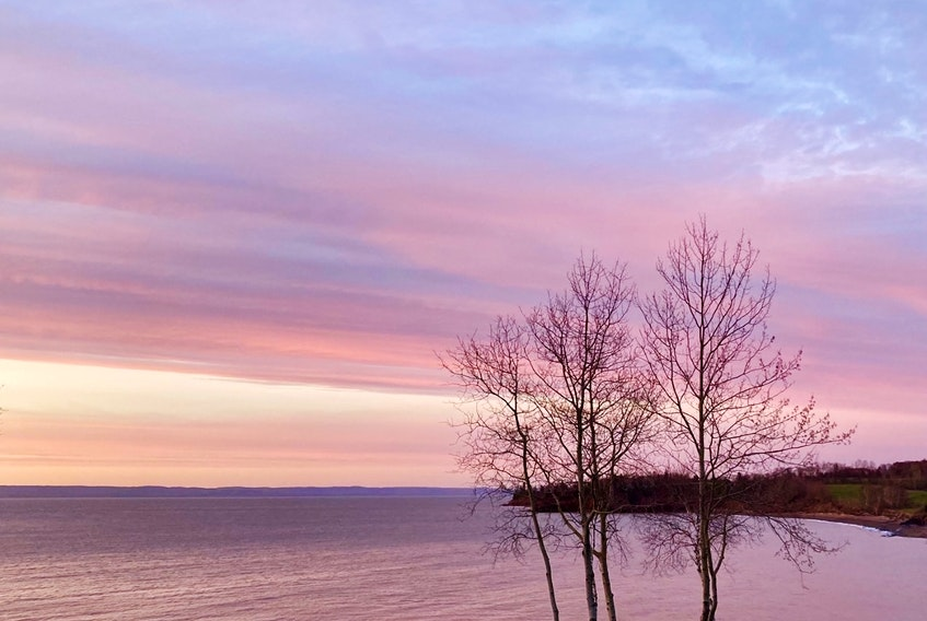 Darlene Ashley sent in this photo of an enchanting sunset over the water in Tennecape, N.S. I love the array of colours such as pink, blue and purple expressed in the sky and reflected on the water. A sunset is truly a natural piece of artwork right above our eyes, on display every evening.    Thank you for sharing this sunset with us all Darlene.
