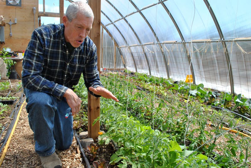 Matthew Roy, co-owner of Coastal Grove Farm in Upper Port LaTour explains the growing system in the farm's geothermally temperature-controlled greenhouse. KATHY JOHNSON - Saltwire network