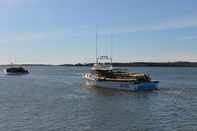 Fishing boats left the North Rustico Harbour around 9 a.m. for the start of spring lobster season. - Terrence McEachern