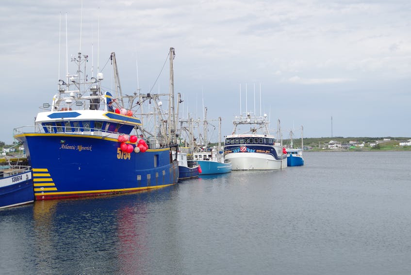 Fishing boats at Catalina, Trinity Bay, NL, June 2020.