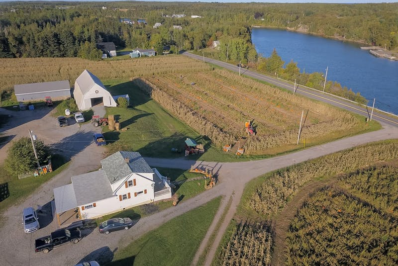 Rendell's Farm is over a century old, and is nearly on its fourth generation in the same family. - Contributed