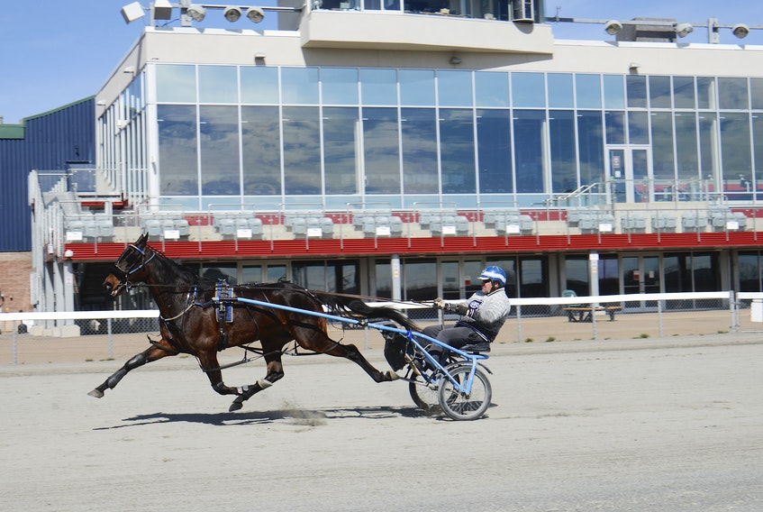 Scott Bell trains Woodmere Soul Wednesday at Red Shores at the Charlottetown Driving Park. The summer season begins Saturday.