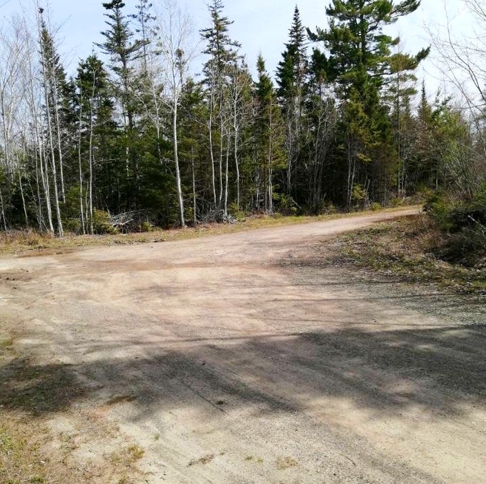 This is part of the final section of Stoney Point Road in Orangedale, Inverness County. Residents are wondering why the province suddenly decided to stop maintaining the last two kilometres the rural roadway after 40 years. Contributed - Saltwire network