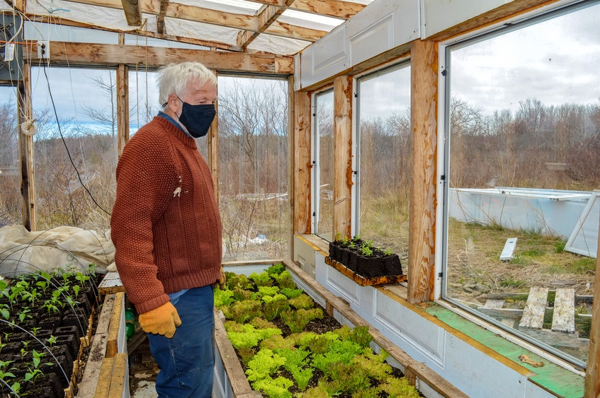 Blue Heron Farm produces over 50 different types of vegetables. JESSICA SMITH/CAPE BRETON POST
