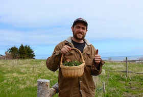 A basket of stinging nettles harvested by Shawn Dawson. Earlier that morning, Dawson prepared a pesto using this ingredient.