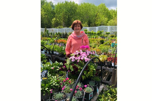 Jeanette Hermanson's Green Thumb Farmers' Market is a sea of colour against a background of happy, hopeful chatter as Pictou County gardeners, of varying abilities and experience, turn to planting baskets, containers and beds to offset the COVID blues.