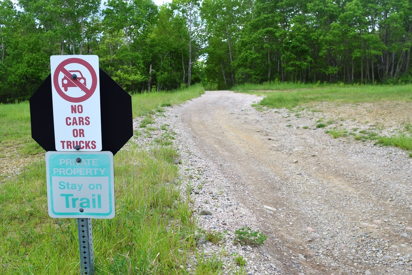The part of the ATV trail on the property of the J.A. Douglas McCurdy Sydney Airport which connects Glace Bay with Sydney. Sharon Montgomery-Dupe • Cape Breton Post - Sharon Montgomery