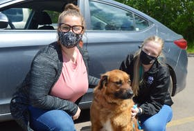 The P.E.I. Humane Society is once again reminding people not to leave their animals in hot cars this summer. Helping to increase awareness of the issue is Ashley MacLeod, left, development and communications co-ordinator with the society; Sam Wojack, a clicker trainer with the Atlantic Veterinary College; and Charlie, a five-year-old German shepherd mix who is up for adoption. Dave Stewart • The Guardian