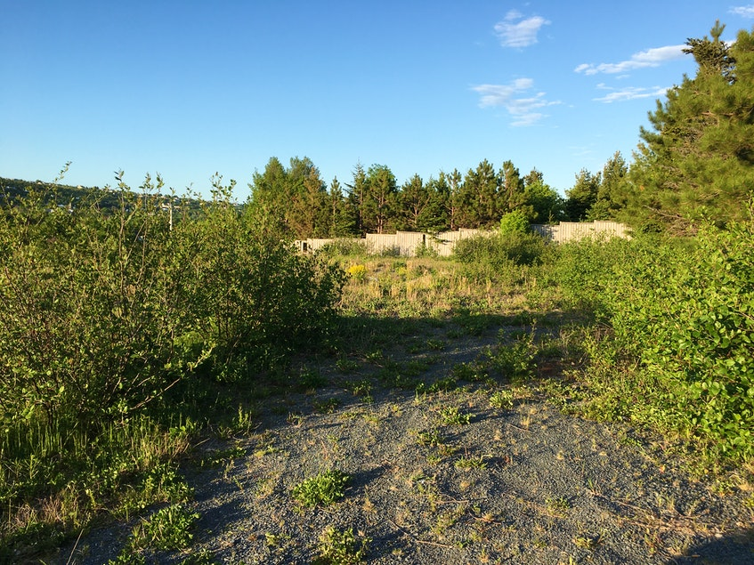 The Town of Carbonear recently voted to start the process to sell this piece of land on Hayden Heights. The land was given to the land by CIBC after the home there, which belonged to convicted murderer Trent Butt, was demolished several years ago.  - Saltwire network